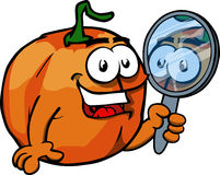 Pumpkin holding a mirror Royalty Free Stock Photo
