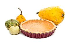 Pumpkin pie arranged with small pumpkins isolated on white backg Royalty Free Stock Photography