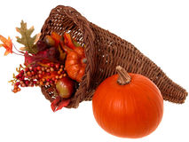 Pumpkin & Horn Basket Arrangement Stock Photography