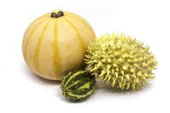 Pumpkin, horned melon vegetables. Close up viw of three small vintage vegetables, pumpkin, horned melons isolated on white Stock Photography