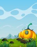 Pumpkin house in the field. Illustration Stock Photo