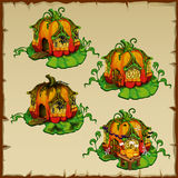 Pumpkin houses where there live gnomes pumpkin Stock Images
