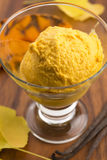 Pumpkin ice cream Royalty Free Stock Images