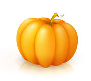 Pumpkin icon Royalty Free Stock Images