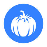 Pumpkin icon black. Singe vegetables icon from the eco food black. Stock Images