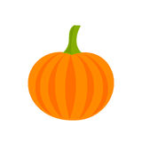 Pumpkin icon illustration Royalty Free Stock Images