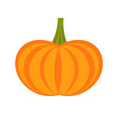 Pumpkin icon vector Royalty Free Stock Photo