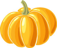 Pumpkin icon. Yellow pumpkin drawing close-up on white background Stock Image