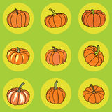 Pumpkin icons Royalty Free Stock Photography