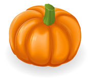 Pumpkin Illustration Royalty Free Stock Photography