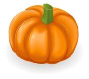 Pumpkin Illustration Royalty Free Stock Photography