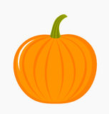 Pumpkin illustration Stock Photo