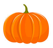 Pumpkin illustration Royalty Free Stock Images