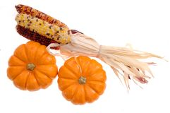 Pumpkin and Indiana corn Royalty Free Stock Image