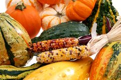 pumpkin and Indiana corn Royalty Free Stock Photography