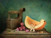 Pumpkin with iron stock photos