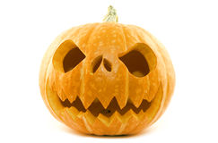 Pumpkin Isolated Stock Image