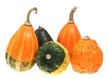 Pumpkin isolated Stock Image