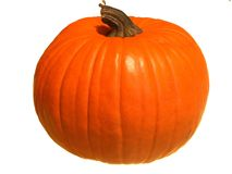 Pumpkin isolated Royalty Free Stock Photo