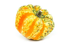 Pumpkin isolated Stock Images