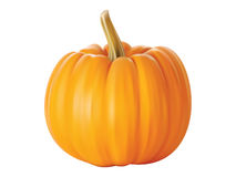 Pumpkin. Isolated close - up of a realistic pumpkin Royalty Free Stock Photography