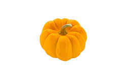 Pumpkin isolated Royalty Free Stock Photos