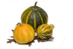 Pumpkin isolated over white Royalty Free Stock Photos