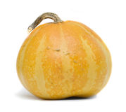 Pumpkin isolated over white Royalty Free Stock Photography