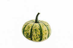 Pumpkin isolated Stock Photography