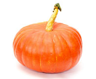 Pumpkin isolated on white. Royalty Free Stock Photo