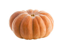 Pumpkin isolated on white. Close-up view of pumpkin isolated on white Royalty Free Stock Photo