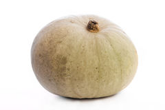 Pumpkin isolated on white. Green pumpkin isolated on white royalty free stock photos