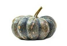 Pumpkin isolated on white background Royalty Free Stock Images