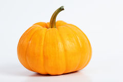 Pumpkin. Isolated with white background Royalty Free Stock Image