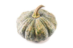 Pumpkin isolated. On white background Royalty Free Stock Photography