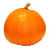 Pumpkin. Isolated pumpkin with white background Royalty Free Stock Photo