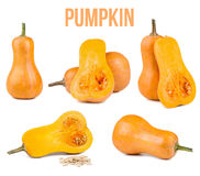 Pumpkin isolated. On white background stock photos