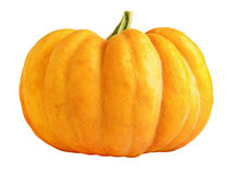 Pumpkin isolated on white stock images