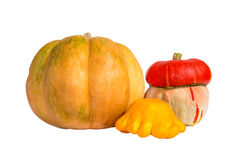 Pumpkin isolated on white Royalty Free Stock Image