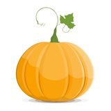 Pumpkin isolated on white background. EPS8 Stock Images