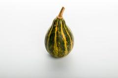 Pumpkin isolated on white background. Fresh pumpkin isolated on white background Stock Image