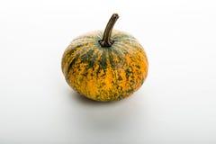 Pumpkin isolated on white background. Fresh pumpkin isolated on white background Stock Photography