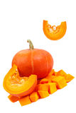 Pumpkin isolated on white background. Fresh and orange pumpkins Stock Photos
