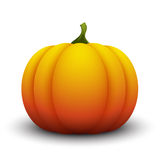 Pumpkin isolated on white background Royalty Free Stock Photography