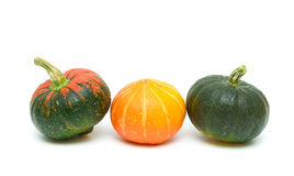 Pumpkin isolated on white background royalty free stock photo