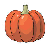 Pumpkin isolated on white background. Stock Images