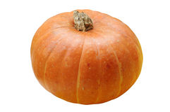 Pumpkin isolated Royalty Free Stock Image