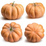 Pumpkin isolated on white, thanksgiving day. Pumpkin isolated on white background with clipping path Stock Images