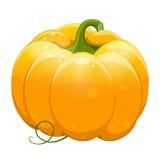 Pumpkin_3 jpg Fotografia Stock