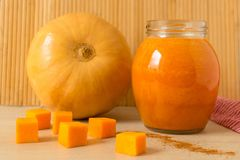 Pumpkin juice and pumpkins royalty free stock photo